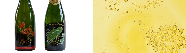 Champagne Gantois-Louvet, Bouteilles Brut ségrigraphiées