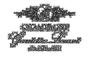 Champagne Gantois Louvet